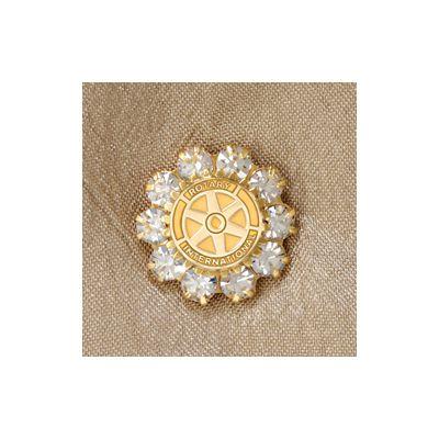 Sparkling Rhinestone Emblem Pin
